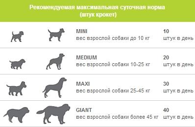 является агрегатором, какие витамины нужны для собаки перед вязкой любите бокс